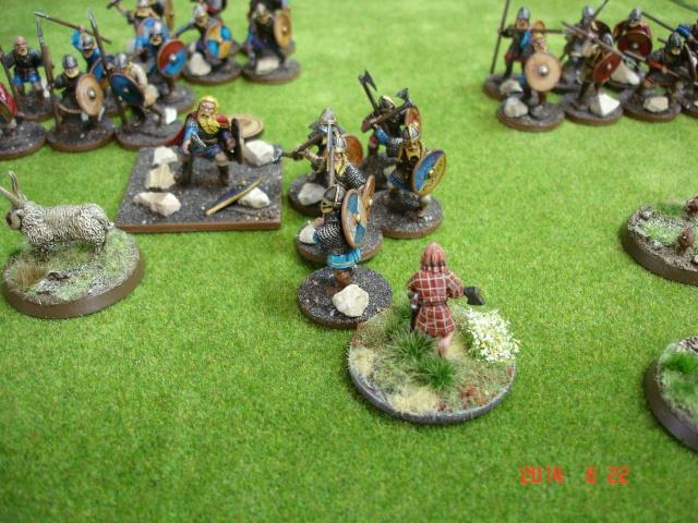 Levée en Masse 2014: Commémoration du millénaire de la bataille de Clontarf Dsc02216