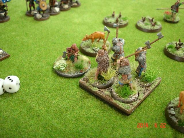 Levée en Masse 2014: Commémoration du millénaire de la bataille de Clontarf Dsc02218