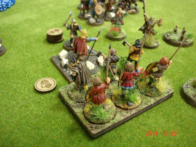 Levée en Masse 2014: Commémoration du millénaire de la bataille de Clontarf Dsc02222