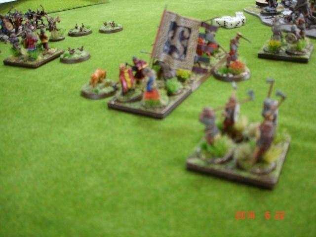 Levée en Masse 2014: Commémoration du millénaire de la bataille de Clontarf Dsc02224