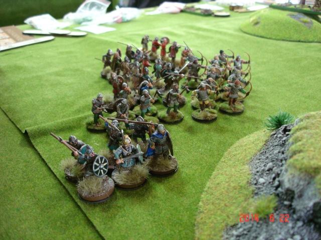 Levée en Masse 2014: Commémoration du millénaire de la bataille de Clontarf Dsc02233
