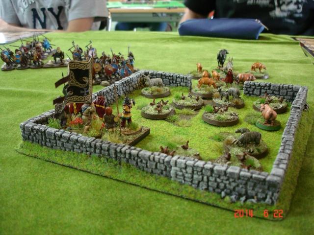 Levée en Masse 2014: Commémoration du millénaire de la bataille de Clontarf Dsc02234