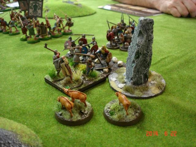Levée en Masse 2014: Commémoration du millénaire de la bataille de Clontarf Dsc02252