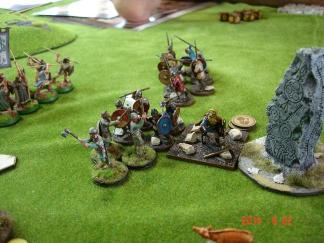 Levée en Masse 2014: Commémoration du millénaire de la bataille de Clontarf Dsc02254