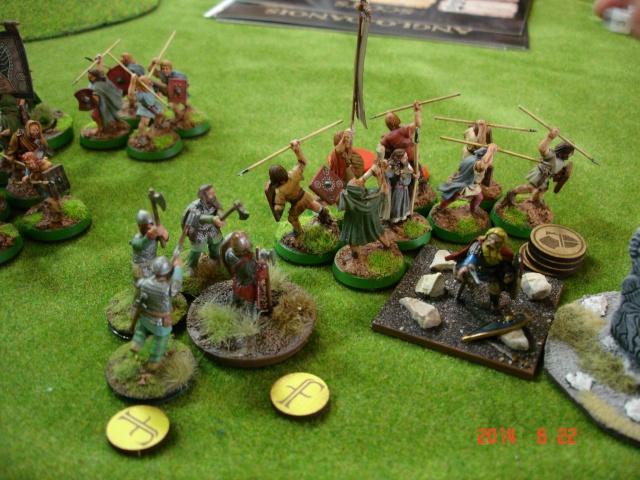 Levée en Masse 2014: Commémoration du millénaire de la bataille de Clontarf Dsc02258