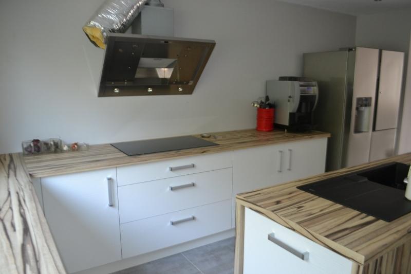 construction d'une cuisine - Page 3 Dsc_0091