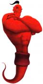 MERCREDI 27 AOUT 2014 > Quinté et autres réunions / courses hippiques Jafar_10