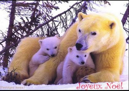 JOYEUX NOEL A TOUS Noel10