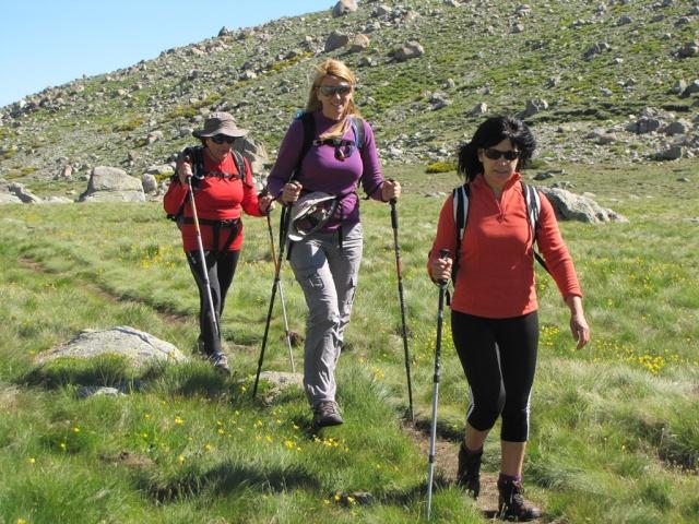 20130615 - GREDOS - Subida al MOREZÓN (2.389 m)  00749