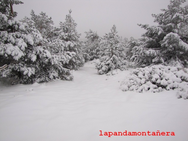 20131117 - IMPRESIONANTE NEVADA EN COTOS 01126