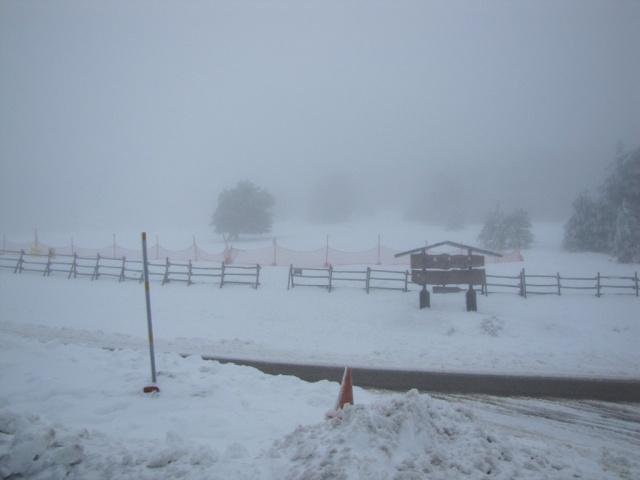 20130121 - UNA VUELTA POR COTOS (entre la niebla) 01232