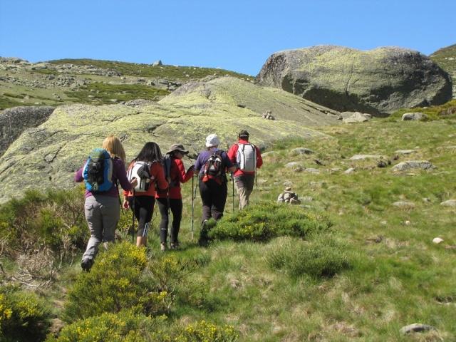 20130615 - GREDOS - Subida al MOREZÓN (2.389 m)  01243