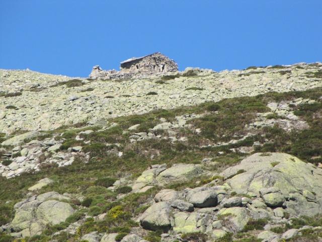 20130615 - GREDOS - Subida al MOREZÓN (2.389 m)  01341