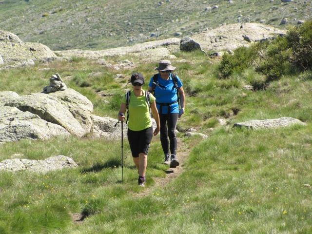 20130615 - GREDOS - Subida al MOREZÓN (2.389 m)  01454