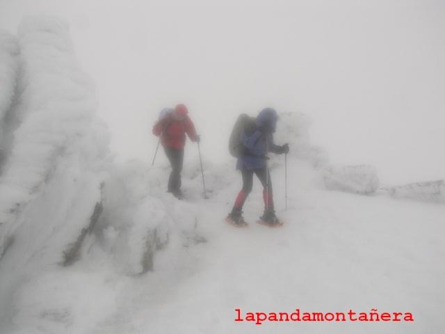 20140125 - GUADARRAMA - RUTA A LA PINAREJA - OTRO INTENTO 01735