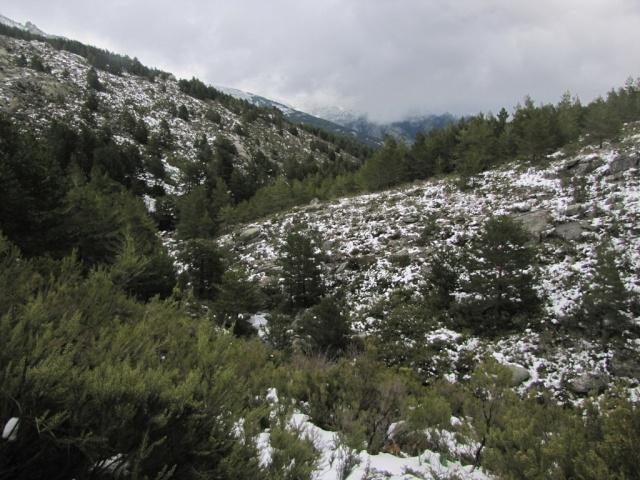 20130520 - PEDRIZA - LOS CHORROS DEL MANZANARES 01953