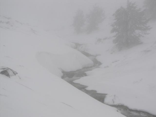 20130121 - UNA VUELTA POR COTOS (entre la niebla) 02830