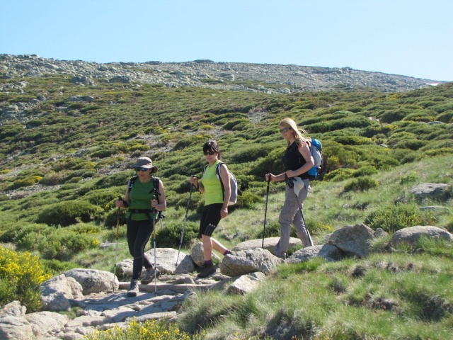 20130615 - GREDOS - Subida al MOREZÓN (2.389 m)  11815