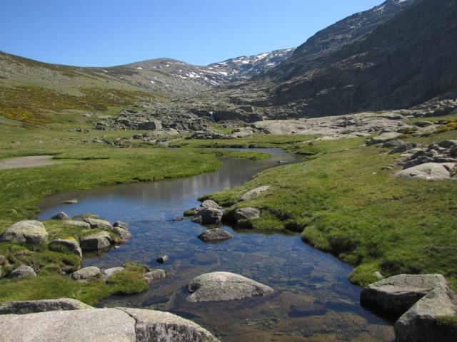 20130615 - GREDOS - Subida al MOREZÓN (2.389 m)  12015