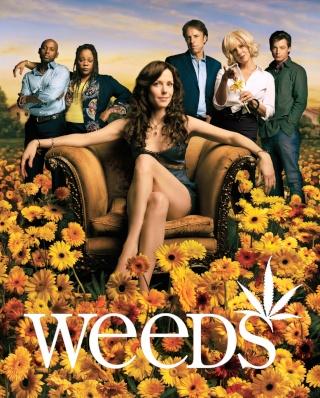 Weeds       936ful10