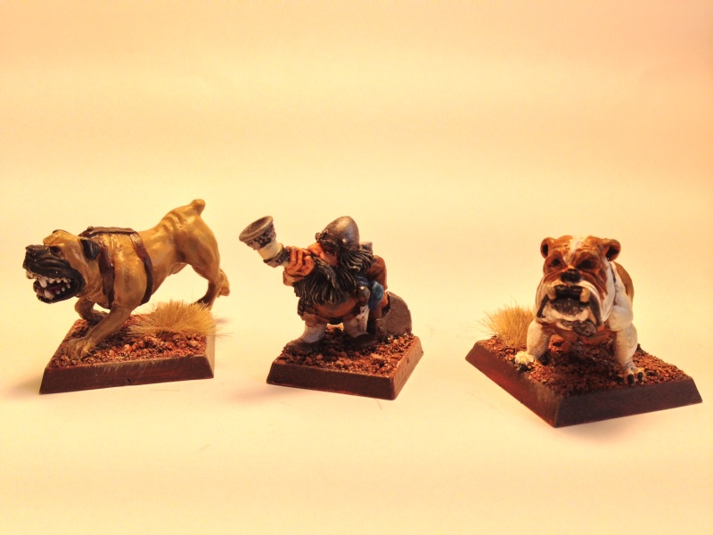 My completed dwarf warband Img_1131