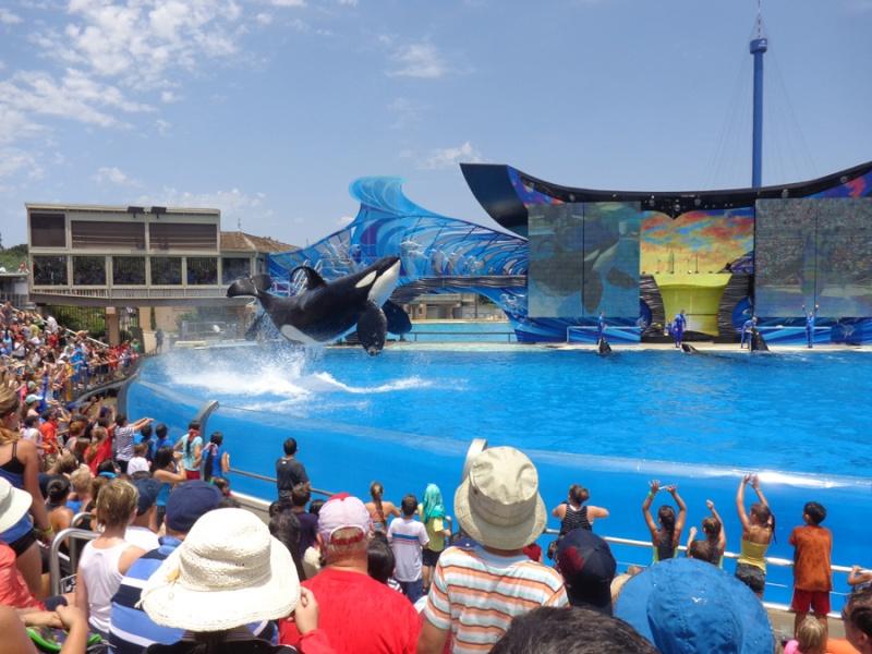 Notre inoubliable périple californien du 25 juin au 16 juillet 2013 (San Francisco, Yosemite, Los Angeles, Legoland, San Diego Zoo & SeaWorld et... DISNEYLAND!)  - Page 11 10212