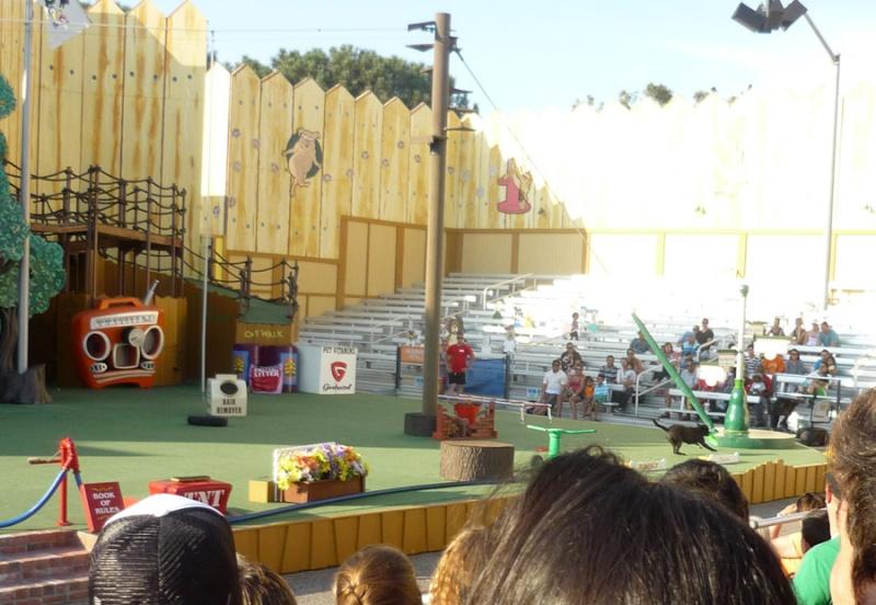 Notre inoubliable périple californien du 25 juin au 16 juillet 2013 (San Francisco, Yosemite, Los Angeles, Legoland, San Diego Zoo & SeaWorld et... DISNEYLAND!)  - Page 11 7912