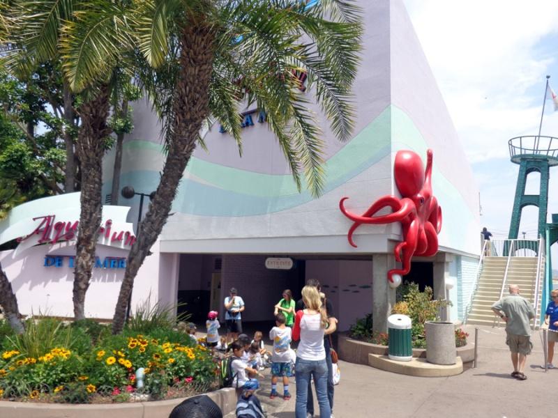 Notre inoubliable périple californien du 25 juin au 16 juillet 2013 (San Francisco, Yosemite, Los Angeles, Legoland, San Diego Zoo & SeaWorld et... DISNEYLAND!)  - Page 11 8011