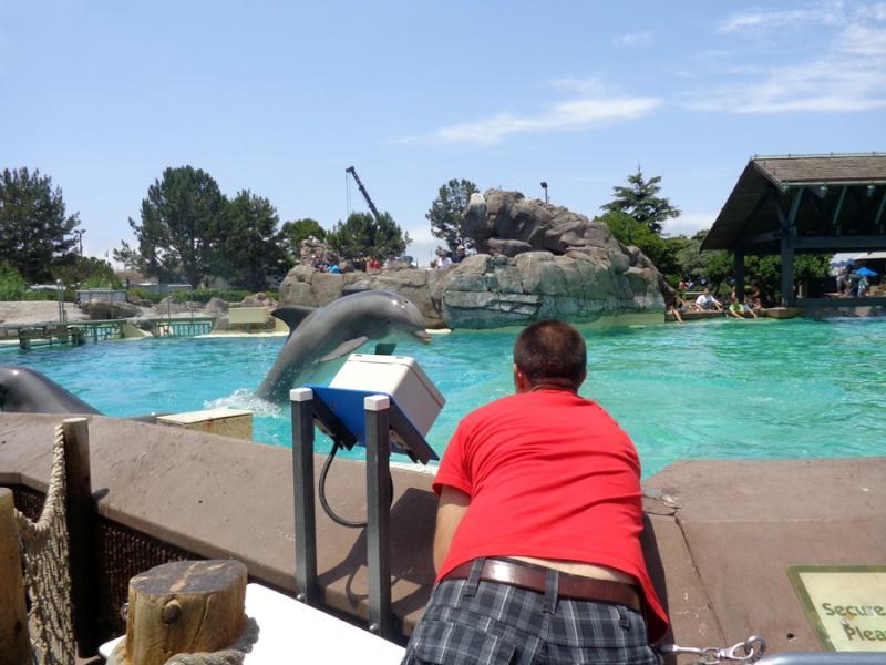Notre inoubliable périple californien du 25 juin au 16 juillet 2013 (San Francisco, Yosemite, Los Angeles, Legoland, San Diego Zoo & SeaWorld et... DISNEYLAND!)  - Page 11 8211