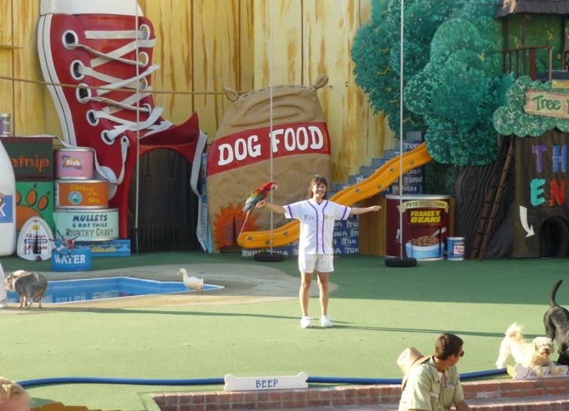Notre inoubliable périple californien du 25 juin au 16 juillet 2013 (San Francisco, Yosemite, Los Angeles, Legoland, San Diego Zoo & SeaWorld et... DISNEYLAND!)  - Page 11 9012