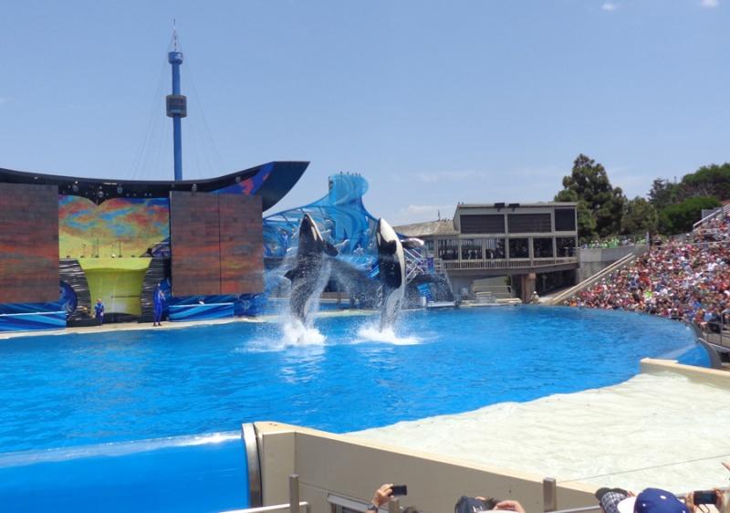 Notre inoubliable périple californien du 25 juin au 16 juillet 2013 (San Francisco, Yosemite, Los Angeles, Legoland, San Diego Zoo & SeaWorld et... DISNEYLAND!)  - Page 11 9311
