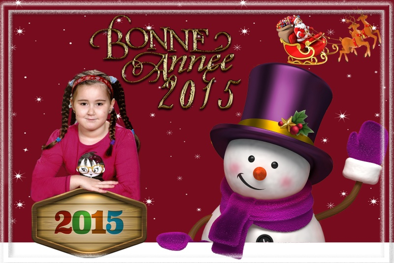 Carte de Bonne Année + calendrier Sans_399