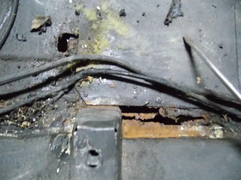 Réstoration de plancher Dscn2513
