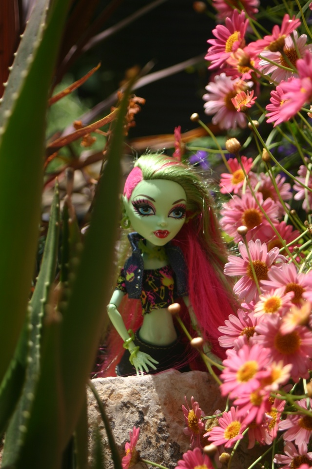 Mes Shootings de Monster High... Img_0414