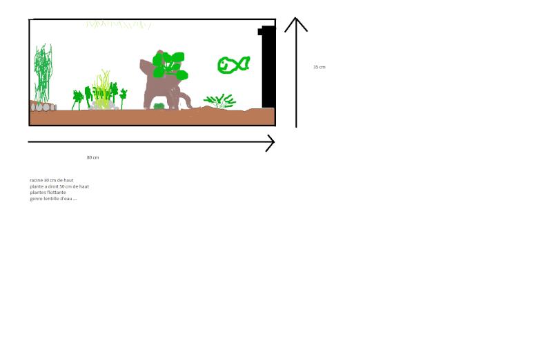 mon projet d'un 80 litres - Page 2 Aqua11