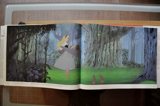 Les livres Disney Dsc_0814