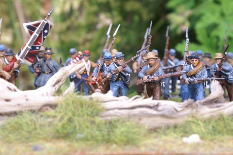 mes deux premiers régiments confédérés Confed13