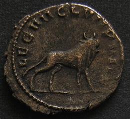 Gallien Dscn2811