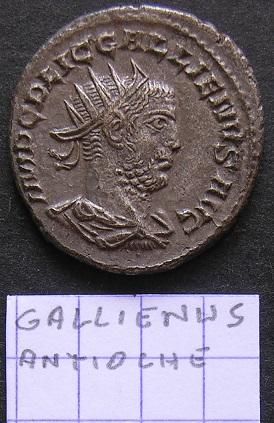 Quelques Gallienus... Dscn7110