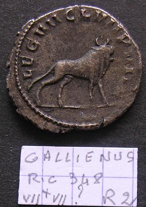 Quelques Gallienus... Dscn7121