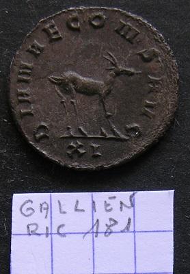 Quelques Gallienus... Dscn7313
