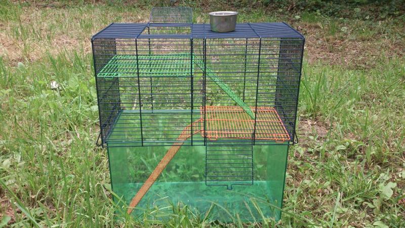 Vend cage Savic Habitat Dsc_1814