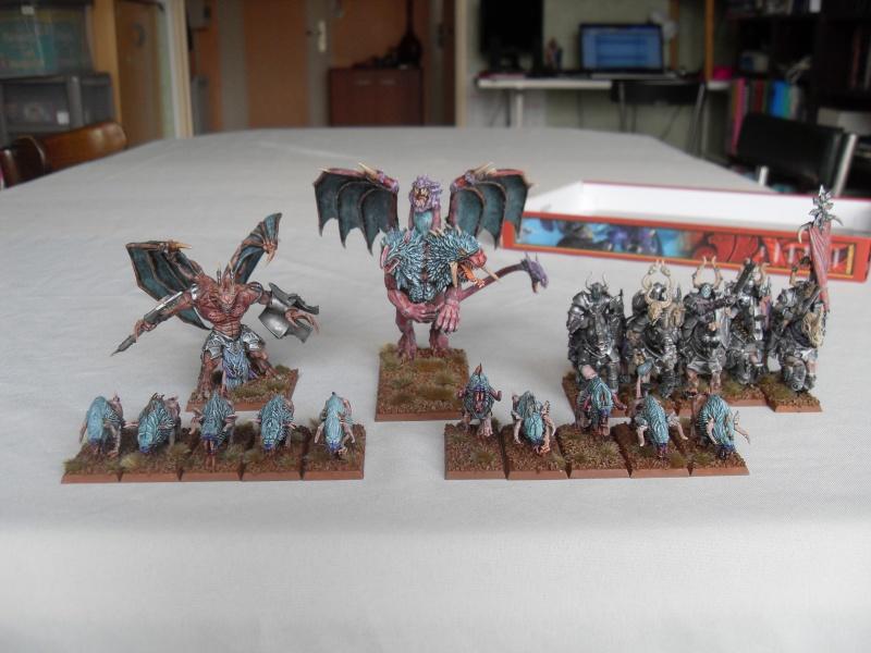 Armée du Chaos  Sdc13611