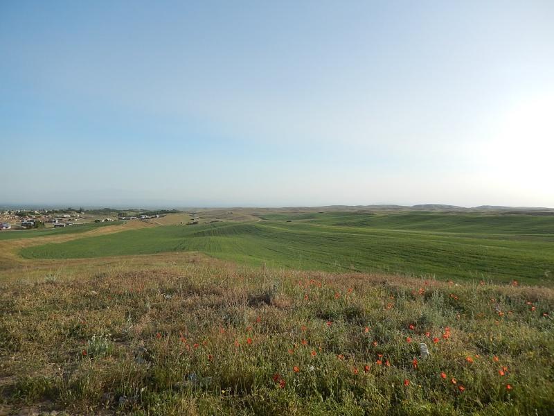 OSH le 23.05.2014 passage de notre 16 ème  frontière Dscn4813