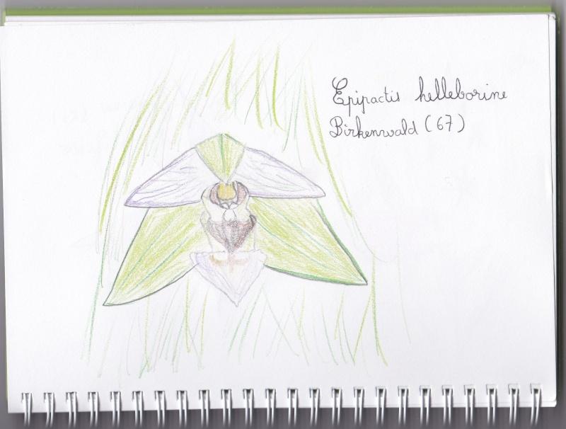 Mes dessins... Img_2012