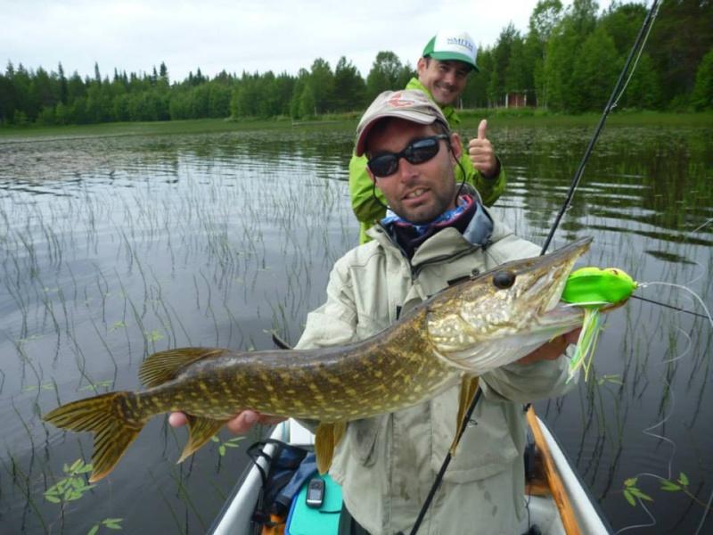 Séjour Suède et blog : Fishing Aventures  Alban_14