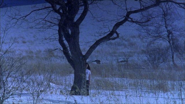 Ôdishon / Audition (1999, Takashi Miike) - Page 3 Auditi14
