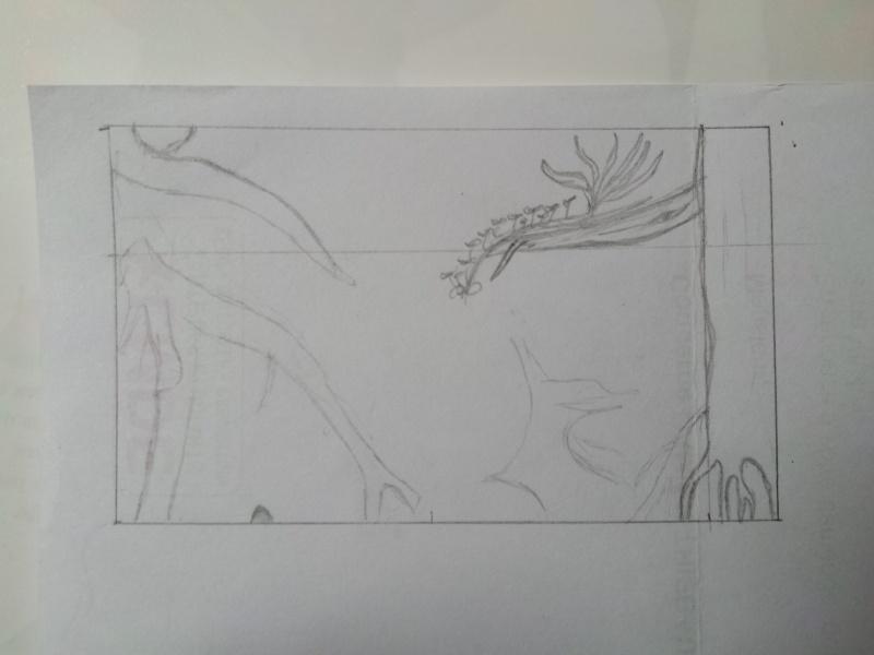 Mon projet de riparium amazonien - Page 2 20140830