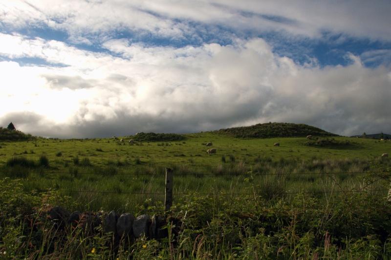 Ecosse: Speyside, Isle of Skye, Edimbourg Dsc_0119