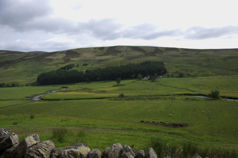Ecosse: Speyside, Isle of Skye, Edimbourg - Page 2 Dsc_0610